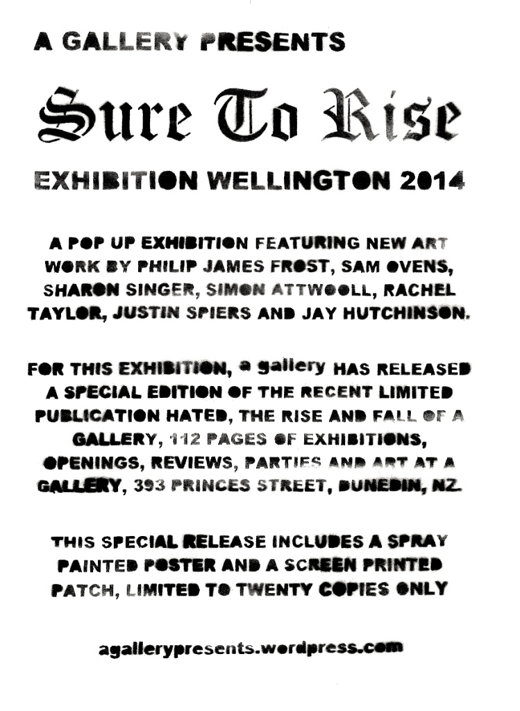 a gallery presents SURE TO RISE Exhibition Wellington 2014 S
